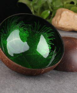 Kokosová miska zelená