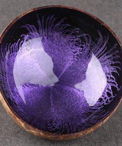 Kokosová miska Fialová