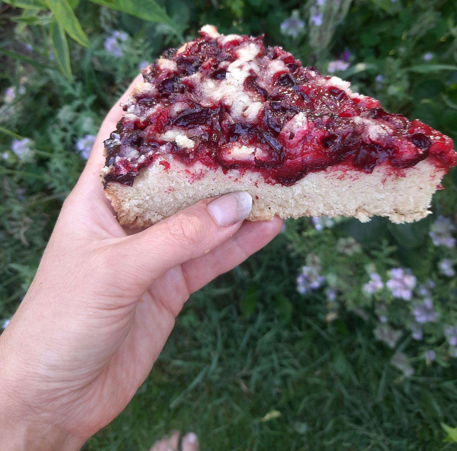 Myrobalánový koláč